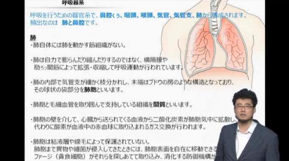 アフロ先生と学ぶ登録販売者最短合格講座「呼吸器系」より